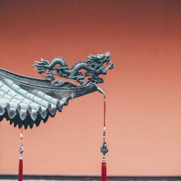 Basics of Traditional Chinese Medicine