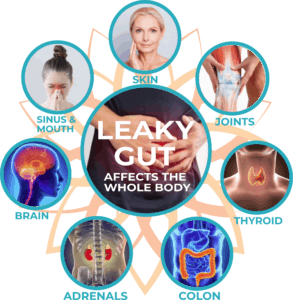 fulvic acid helps fix your leaky gut